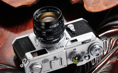 Grays of Westminster - Award-winning exclusively Nikon